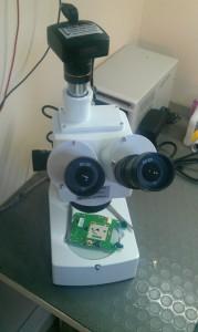 40x-optik-zoom-1